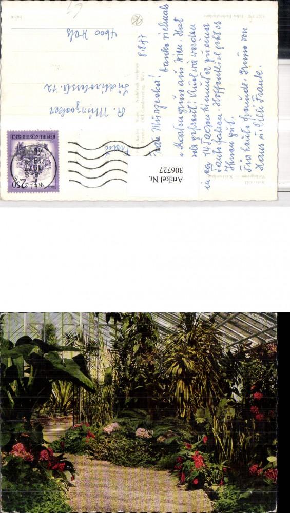 306727 Wels Volksgarten Kakteenhaus Kakteen Ansichtskarten